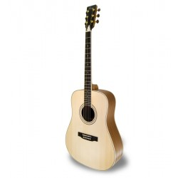 Acoustic guitar APC WG100