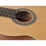 Klasiskā ģitāra Salvador CS-244
