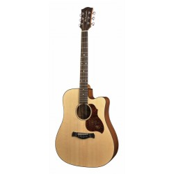 Richwood Acoustic guitar D-20-CE