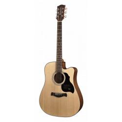 Richwood Acoustic guitar D-40-CE