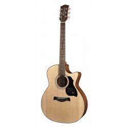 Richwood Acoustic Guitar G-40-CE