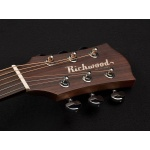 Richwood Acoustic Guitar G-40-CE