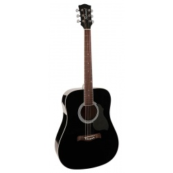 Richwood Acoustic Guitar RD-12-BK