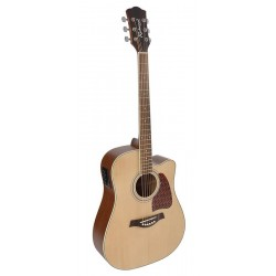 Richwood Acoustic guitar RD-16 CE
