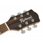 Richwood Acoustic guitar RG-17-CE