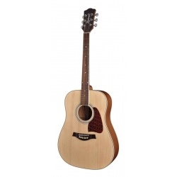 Acoustic Guitar Richwood RD-16