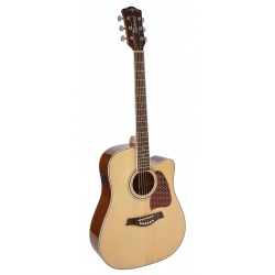 Richwood Acoustic guitar RD-17-CE