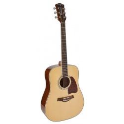 Richwood Acoustic Guitar RD-17