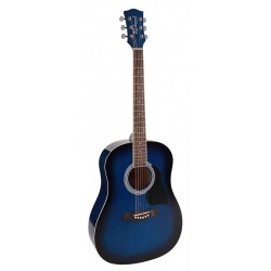 Richwood Acoustic Guitar RD-12-BUS