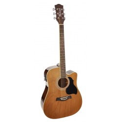 Richwood Acoustic Guitar RD-12-CE