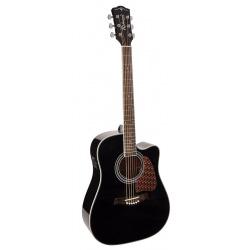 Richwood Acoustic guitar RD-17-CEBK