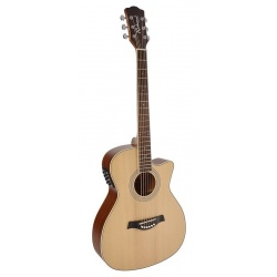 Richwood Acoustic guitar RG-16-CE