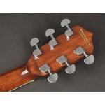 Richwood guitar banjo 6-string RMB-906