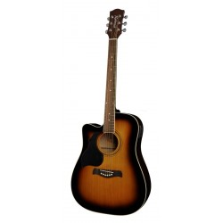 Richwood Acoustic Guitar RD-12LCE-SB (Lefthand)