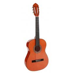 3/4 Classical Guitar Salvador CG-134-NT