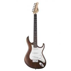 Elektriskā ģitāra Cort G100 OPW