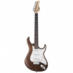 Cort Electric Guitar G100 OPW