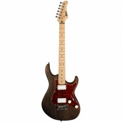 Cort Electric Guitar G100HH OPW