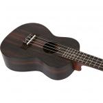 Koncerta ukulele Flight DUC-460-AMARA