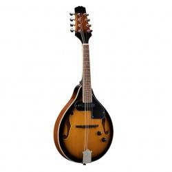 Bluegrass Mandolin BMA-60E-VS