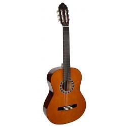 Klasiskā ģitāra Valencia VC104