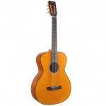 Valencia Classical Guitar VA434-VNA