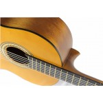Valencia Classic Guitar VC204