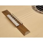 Classical Guitar Valencia VC304