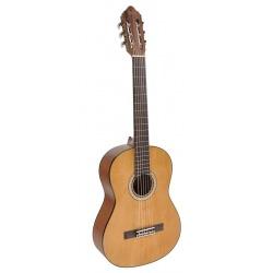 Klasiskā ģitāra Valencia VC404