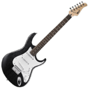 Stratocaster Type Guitars
