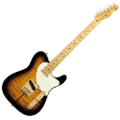 Telecaster Type Guitars