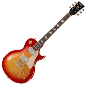 Les Paul Type Guitars