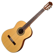 Classical Guitar Bags and Cases