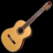 Klasiskās ģitāras (82)